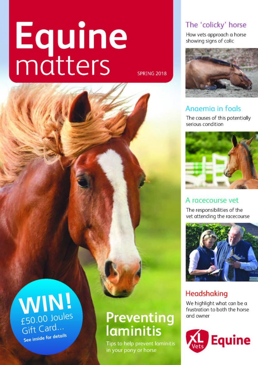 Equine Matters Autumn / Winter 2016 Front Cover