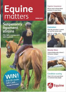 Equine Matters